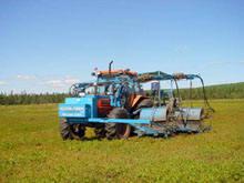 Doug Bragg Enterprises Ltd. Mechanical Blueberry Harvester